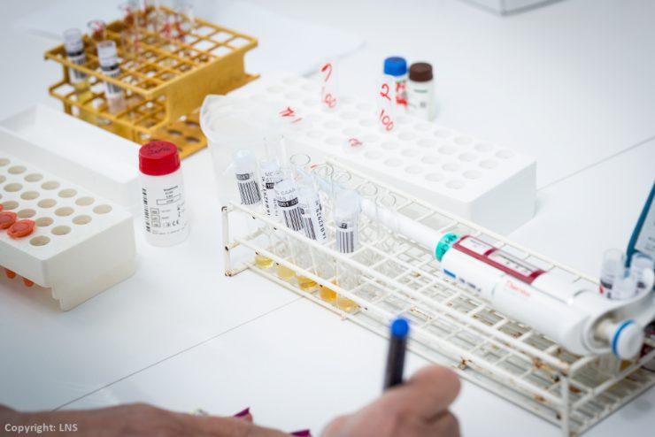 Surveillance de la grippe