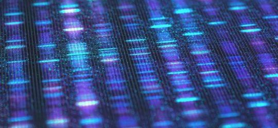 Radio 100,7 – DNA-Sequenzéierung: Den LNS wëllt seng Ekippen opstocken