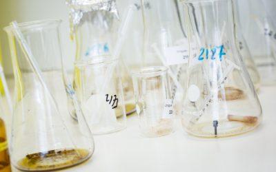 Analyse des drogues en laboratoire :  le LNS identifie les substances dangereuses