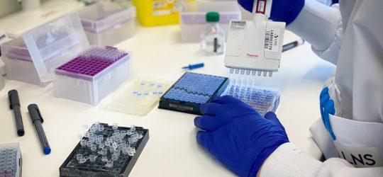 [Rapport annuel 2020] LE QUOTIDIEN ET LES PROJETS DE RECHERCHE : LE RÔLE DU DÉPARTEMENT DE MICROBIOLOGIE EN 2020